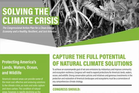 Capture the Full Potential of Natural Climate Solutions