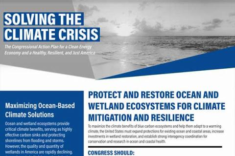 Protect and Restore Ocean and Wetland Ecosystems for Climate Mitigation and Resilience