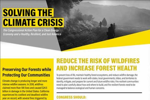 Reduce the Risk of Wildfires and Increase Forest Health